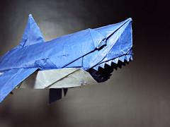 White Shark (Rydos) Tags: white art paper shark origami korean vu nguyen whiteshark designed ngoc hanji koreanpaper nguyenngocvu