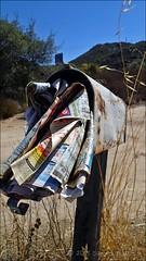 I'm Stuffed! (W9JIM) Tags: mailbox newspaper stuffed delivery w9jim nobodyhome onvacation