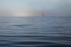 Oblivion (Christian Hacker) Tags: sea lighthouse mist seascape water misty fog canon eos scotland day fife north foggy scottish tay coastal pile atmospheric mystic eery haar tayport nautic 50d