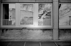 (Jonas.Bergmeier) Tags: art film window analog 35mm 150 konica af 20 50 rodinal halle chs saale hexar 2014 hexanon adox 9min