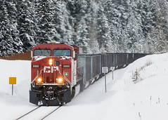 CP 852 @ Crowsnest, BC (Mathieu Tremblay) Tags: railroad winter snow canada electric train river pacific general britishcolumbia hiver pass railway canadian crowsnest neige coal cp cranbrook ge chemin fer canadien subdivision fording charbon sparwood pacifique 8860 es44ac
