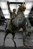 Equestrian Statue of Marcus Aurelius (Robert Wash) Tags: italy rome roma statue bronze ancient italia roman equestrian antiquity marcusaurelius capitolinemuseums classicalantiquity equestrianstatueofmarcusaurelius