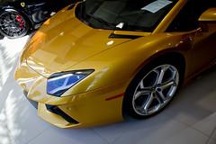 Lamborghini Aventador (ZTesta) Tags: california cars drive hills exotic rodeo beverly