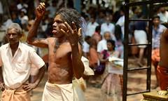 Bharani Festival Bhagavathi Temple Kodungallur Kerala (Ashit Desai) Tags: india festival temple south kerala ritual kavu desai 2014 oracles bharani kodungallur bhagavathi ashit bhagawati theendal vellichapads kozhikkallu moodal