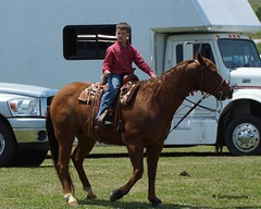 Welch Jr Rodeo, May 2014 (Garagewerks) Tags: horse pet oklahoma race sony junior rodeo athlete saddle equine 50500mm views50 f4563 slta77v allsportwelchjrrodeo may2014horseequinecowboycowgirlcountrysigmabigma