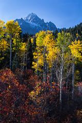 Mt. Sneffels - 9/29/12 at 7:42am (Reece13) Tags: fall colorado aspens sneffels mtsneffels dallasdivide cr9