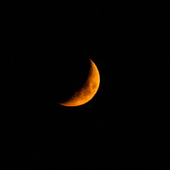 Fire Moon (theeqwlzr) Tags: orange moon blackbackground night nightlights outdoor astrophotography nightsky southerncalifornia outerspace lunar canonrebelxti
