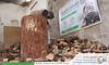 تجهيز حطب (emaar_alsham) Tags: اعمار اعمارالشام حطب سوريا الغوطةالشرقية emaaralsham emaar syrian syria wood children winter