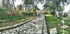 Italica. Santiponce (Sevilla) (jose de sp) Tags: santiponce italica sevilla andalucia spain anfiteatro roma