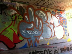 Fuck Em (TheSmell) Tags: wall graffiti fuck cinnamon tag graff em throwie fuckem 2013