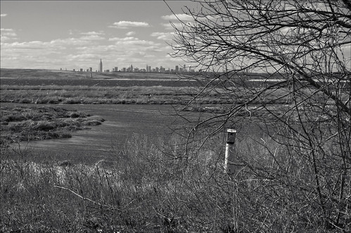 Manhattan Skyline In The Far Distance 3