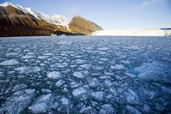 Lednik Brown Glacier at the head of Mak Bay (Russell Scott Images) Tags: novaya zemlya russian arctic bukhta maka near lednik brown glacier russellscottimages