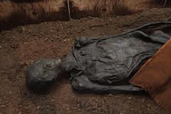 Der Mann von Rendswühren (michael_hamburg69) Tags: museum germany deutschland schleswigholstein landesmuseum schleswig bogbody bogman moorleiche schlosgottorf fund1871