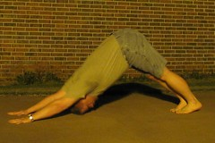 Summer yoga '13: Adho Mukha Svanasana (CS87) Tags: dog male yoga pose bend stretch posture stretching forward asana downward flexibility facing flexable flexible adho mukha flexability svanasana flexibilidad forwardbend maleyoga maleflexibility