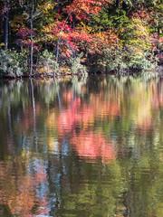 Lakeside Fall Color (Mark Sinderson) Tags: usa reflection fall water leaves ga georgia us seasons unitedstates vegetation northamerica waterscape stonemountainpark treeparts
