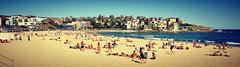 Bondi - Beach Life (Long Road Photography (formerly Aff)) Tags: ocean life road trip sea sun beach bondi sand nikon sydney icon surfing bikini shorts legend sunbathing d90 18105mm