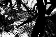 RISCOS -  (7) (ALEXANDRE SAMPAIO) Tags: light luz linhas brasil arte imagens mosaico contraste fractal beleza colagem formas desenhos franca reflexos fantstico espelhos ritmo volume experimento criao detalhes montagem iluminao geometria realidade labirinto formao irreal cubismo tridimensional riscos composio multiplicidade recortes criatividade estrutura imaginao esttica pontodevista possibilidade experimentao caleidoscpio fragmentos deformao inteno mltiplo fragmentao transcendncia irrealidade desenhodeluz alexandresampaio intencionalidade