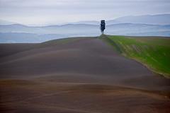 Toscanan maaseutua (luontokuvakauppa.fi) Tags: italy italia tuscany toscana toskana maaseutu pelto ollitoivonen