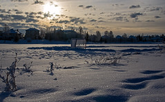 Pond Hockey Rink (DCZwick) Tags: morning winter sky sun lake snow canada cold calgary net ice hockey pond frost hoarfrost alberta rink pentaxart pentaxk3