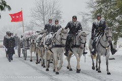 Snowy Day at ANC (KLMP) Tags: old snow storm color cemetery infantry arlington soldier us 3d tomb salute guard battery presidential full funeral national unknown anc primary caisson platoon honors sentinel regiment