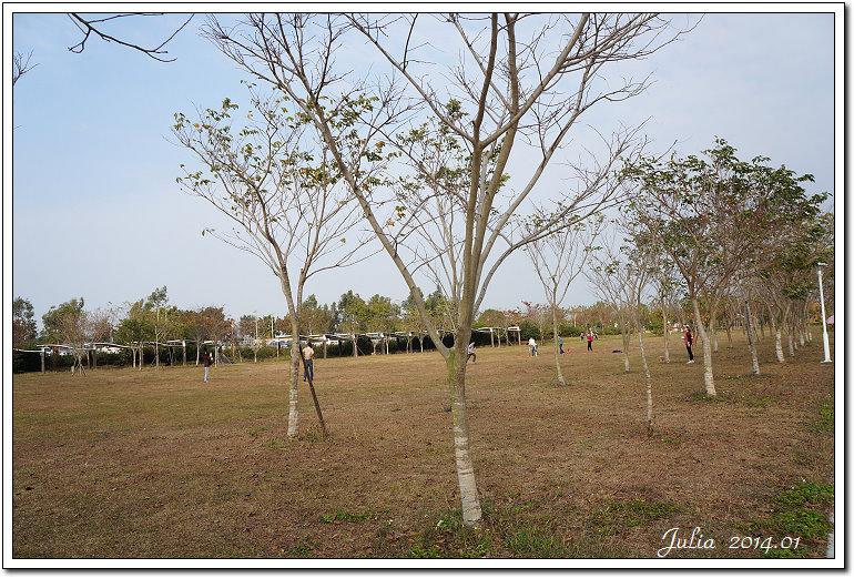 台南都會公園 (4)