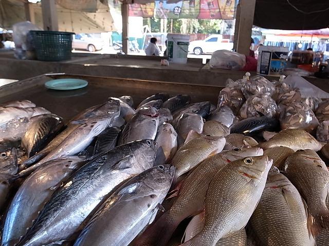 <p>マーケットの魚</p>