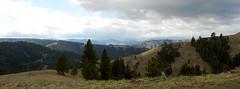 Joseph Plains Recon Road Trip (Doug Goodenough) Tags: joseph plains idaho bryce goodenough 2014 april spring road trip subaru forester drg53114jrecon drg53114 drg531