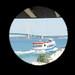 Shepler's Ferry Wyandot and the Mackinac Bridge