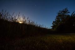 - Moon Over Corn - (Mr. LookUP) Tags: light moon beautiful night dark de stars fun corn shining texel longtimeexposure 2015 koog explored creals