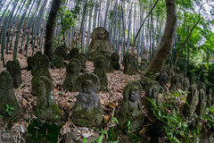 Very old statues in a bamboo forest - Kyoto (hirilorn31) Tags: japan forest temple kyoto statues bamboo zen japon nihon
