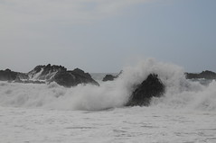 Am Wasser; Playa El Bollullo, Teneriffa (87) (Chironius) Tags: spanien teneriffa puertodelacruz spain испания españa tenerife atlantik atlantischerozean atlanticocean