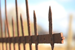 Iron fence with character... (Maria Godfrida) Tags: fence rust fences fencedfriday iron character closeup brown dof decay outside outdoor throughherlens corrosion 7dwf old