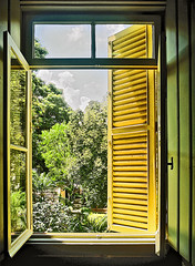 The window. (vieira.de.carvalho) Tags: analogic color kodak ektar canon f1 window