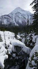 Marble Canyon, Kootenay National Park (renedrivers) Tags: rchan415 renedrivers winter banffnationalpark snow mountain