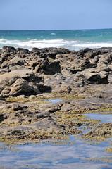 DSC_6952 (Tim Beach) Tags: great ocean road melbourne victoria australia port fairy twelve 12 apostles princetown apollo bay beach sea water