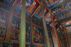 Cambodia - Ta Prohm (Alf Igel) Tags: taprohm kambotschia cambodia phnomphen tabati buddism buddha hindi hindu temple wat tempel khmer