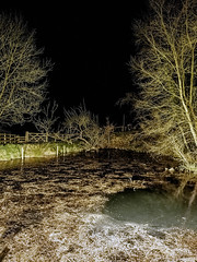 90/365 (efsb) Tags: 90365 project365 2017inphotos 2017yip pond foxtwoodcottages foxt froghall staffordshiremoorlands night nocturnal handheld