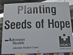 Planting Seeds Of Hope (venetiakelley) Tags: oregon portland hope walk seeds health legacy planting nami adventist 2013