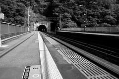 the dragon emerges (troutfactory) Tags: blackandwhite bw monochrome japan train tunnel  kansai  jrline   takedao ricohgrd2  takedaostation