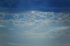 Urlando contro il cielo