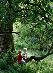 Children of the Greenwood (Speed of Light [2]) Tags: trees light summer sunlight nature childhood forest children naturalbeauty nationaltrust enchantedforest magicmoment hatfieldforest sonycybershoth1 2013 ancientforest carlzeisslens magicalplaces photographybychristopherstrickland