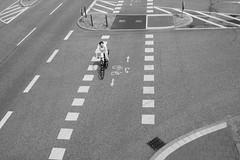 Taking the right way / Den richtigen Weg nehmen (mona_dee) Tags: bw bicycle streetphotography arrows bicyclette kiel