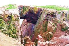 Rainbow island. (artanglerPD) Tags: colour birds rock breeding granite enhanced castleslains