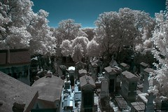IMGP7758- Père Lachaire Infrared