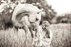 Black and White (Sasha L'Estrange-Bell) Tags: summer blackandwhite horse field animal bokeh palominohorse oliviabell
