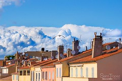 TOIT DE SAINT-TROPEZ (steve lorillere) Tags: roof chimney cloud bird pssaro antena nuage nuvem toit dach oiseau schornstein antenne telhado antenna vogel  chemine chamin sainttropez   antennen