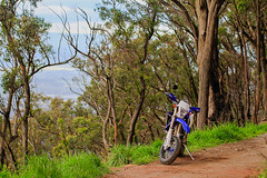 Yamaha WR450F Super Motard (Brendan Dutton) Tags: bike motorbike trail motorcycle yamaha motard supermotard wr450f