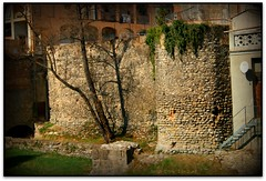 Fragment de muralla del segle XIV, Ripoll (Jess Cano Snchez) Tags: espaa wall canon spain catalonia catalunya middleages muralla catalua pyrenees eos20d pirineos pirineus ripolles efs1855 espanya ripoll elsenyordelsbertins enunlugardeflickr gironaprovincia catalunyamedieval