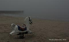 Deserted Beach (scottnj) Tags: abandoned beach water playground fog bay pier spring sand foggy lonely rockinghorse barnegatbay scottnj scottodonnellphotography