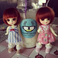 หนูฉองคนยังมะมีชื่อ หนูเปนเด่ะใหม่บ้านมี๊แยม หนูเปนฝาแฝดโดโรธี พวกหนูน่ารักไหมก๊ะ ❤️ #lati #latidoll #love #latiyellow #latidolllimited #bjd #bjdthailand #balljointdoll #blythe #toys #dolls